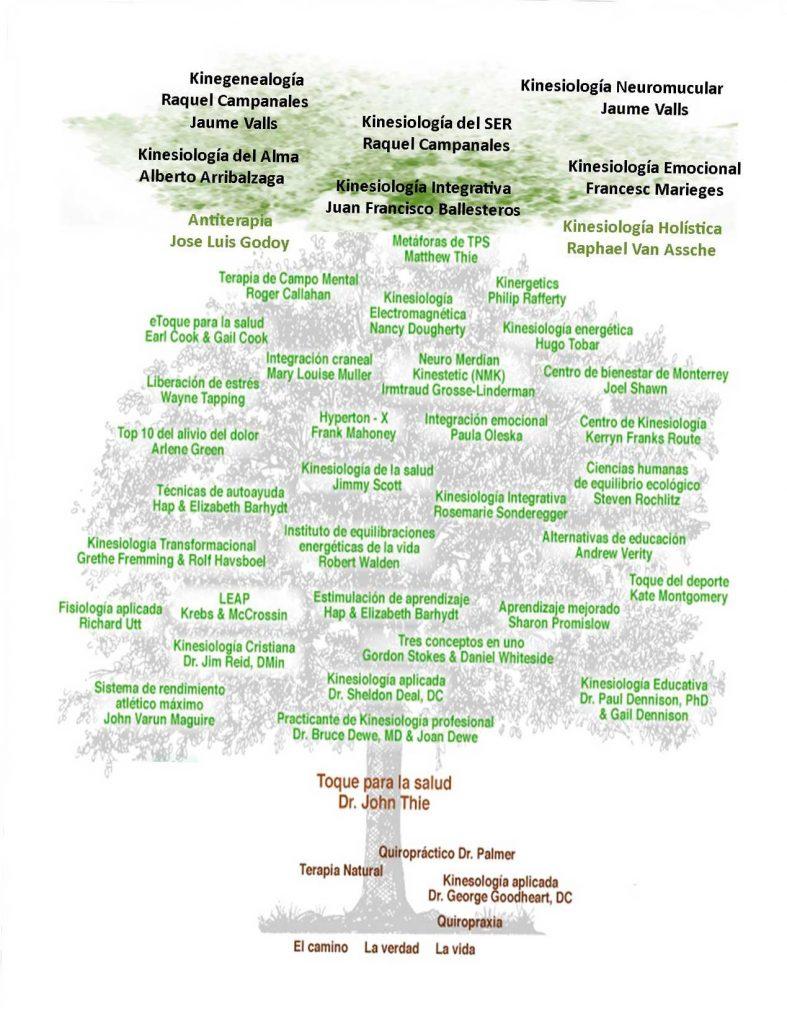 El arbol de las diferentes técnicas y modos de la kinesiologia