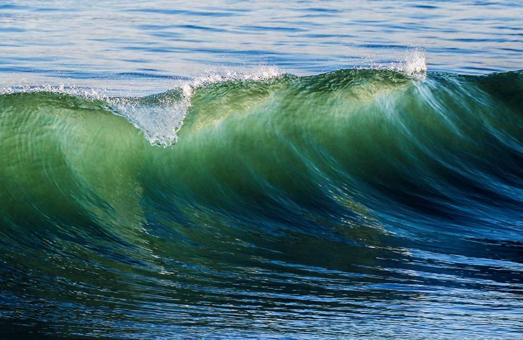 La composición del agua de mar es muy parecida a la de la linfa