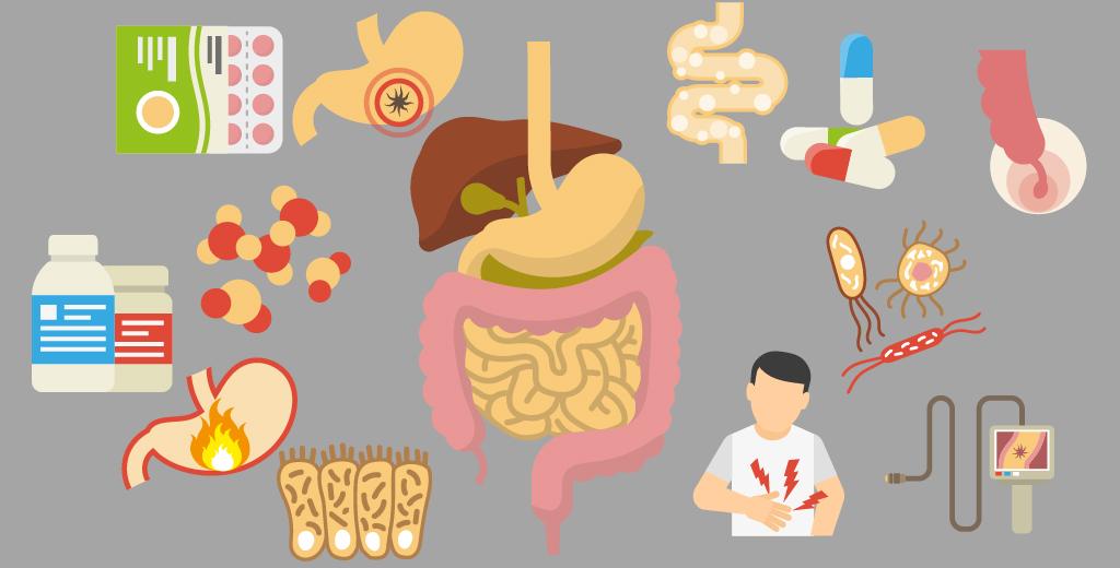 Trastornos intestinales que dificultan la digestión