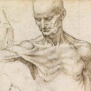 Conocer la naturaleza de la estructura corporal para prevenir cualquier lesión