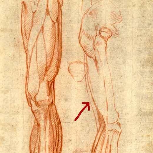 61. Prevenir las lesiones corporales, con Alejandra Hernández 1